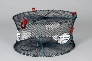 Carapax Crayfish Trap
